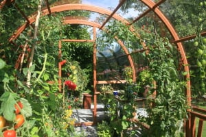SunPod Garden Consulting = Garden Success